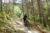 Rock staircase on OCD Trail enduro mountain biking andorra