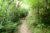 Near the end of OCD descent enduro mountain biking andorra