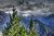 Andorra Moody Views