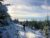 Snowy singletrack 4