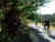 Northern Snowdonia riding 2